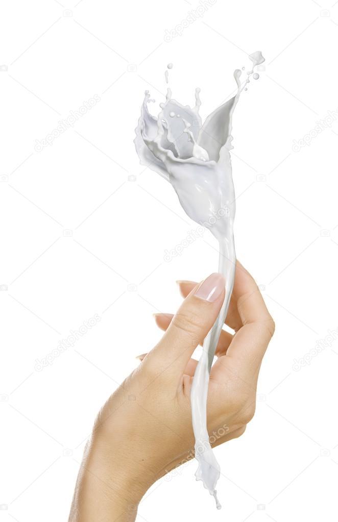 weibliche Hand hält eine schöne Blume, hergestellt aus weißen ...