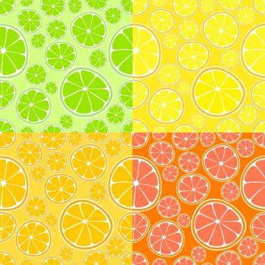 Vector background with citrus. stock vector