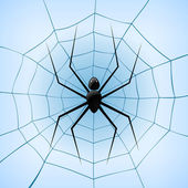 A Spiderweb with Spider on blue background. Vector Illustration