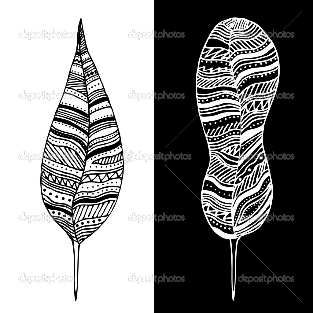 Abstract black and white feathers. stock vector