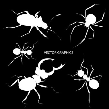 Vector bugs silhouettes. Vector illustration.