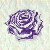 rose notebook papíron vázlat illusztrációja.