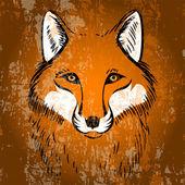 Red fox. Vector illustration.