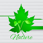 Vector background with new young plant.