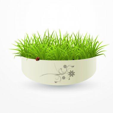Grass in a vase. stock vector