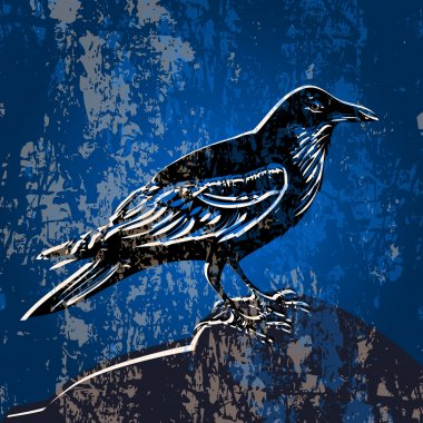 Vector grunge background with crow. stock vector