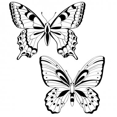 Vector butterflies in black and white - vector illustration stock vector