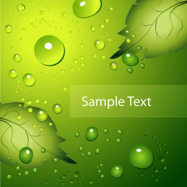 Water drops on green background. stock vector