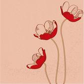 Vektor piros tulipán. Vektoros illusztráció.