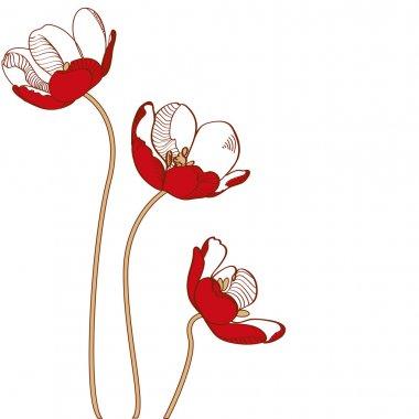 Vector red tulips. Vector illustration. stock vector