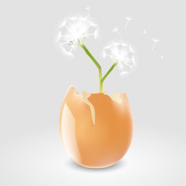 Vector illustration of a dandelion in eggshell. stock vector