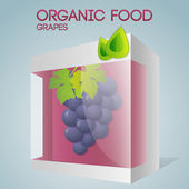 Vector illustration of grapes in packaged. Organic food concept.