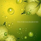 zelená listová přirozeného pozadí - vektorové ilustrace