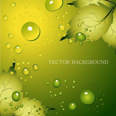 Green leaf natural background - vector illustration stock vector
