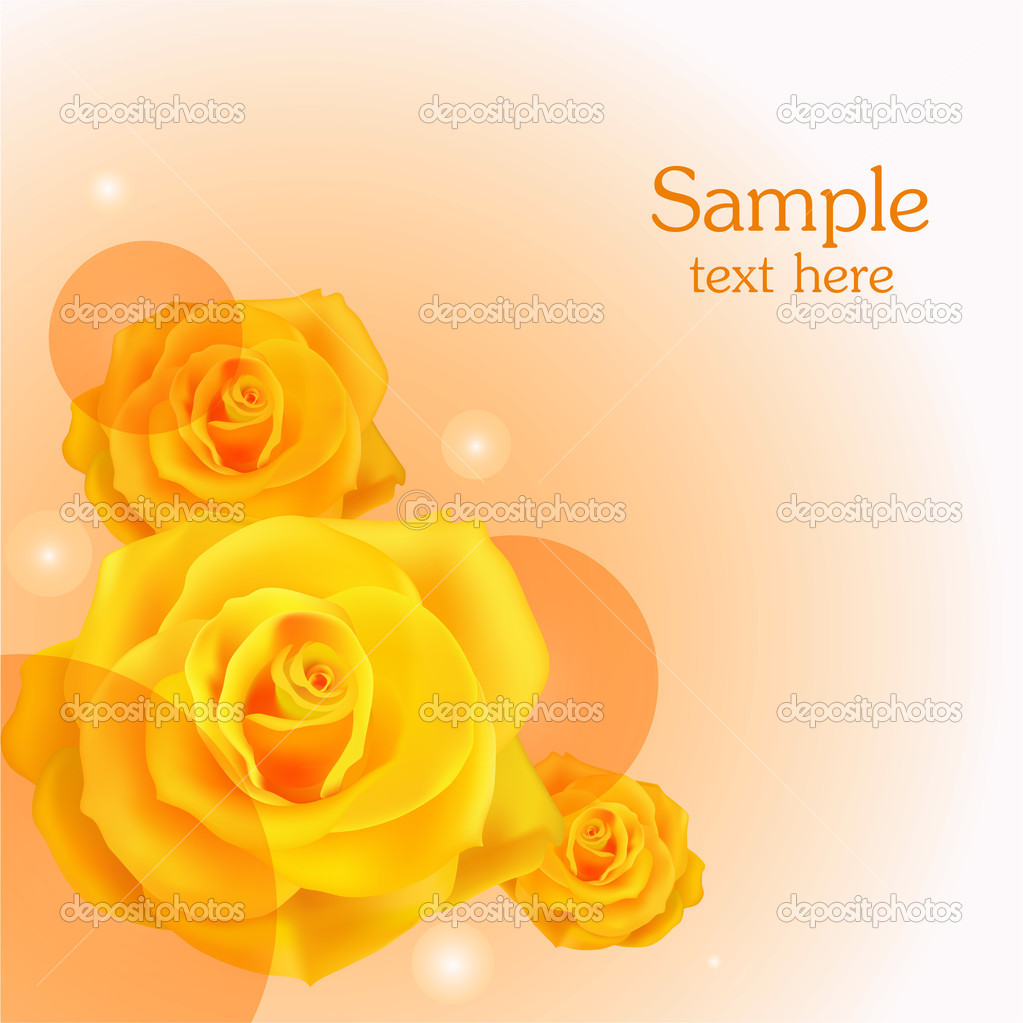 Yellow roses background. Vector illustration. stock vector