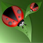 design zelené listy s Beruška