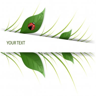 Green leaves design with ladybug stock vector