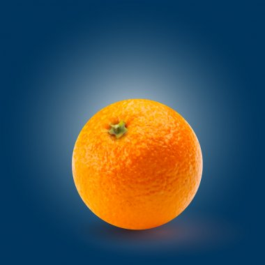 Vector illustration of orange stock vector