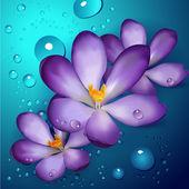 Illustration of violet lotuses