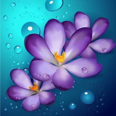 Illustration of violet lotuses stock vector