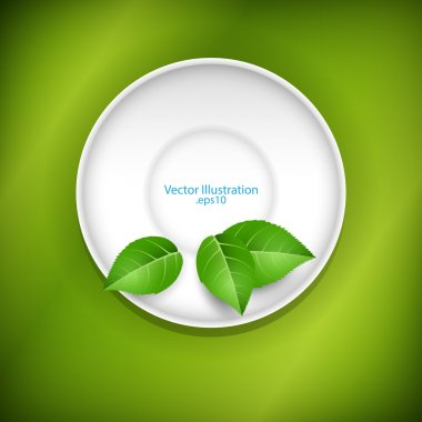 Green leaves on a saucer. stock vector