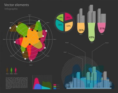 Set of infographic vector elements stock vector