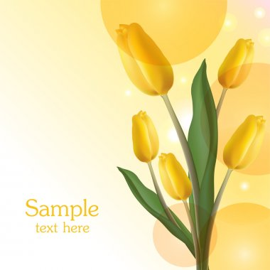 Yellow tulips bouquet card stock vector