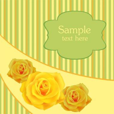 Yellow roses background, vector design stock vector