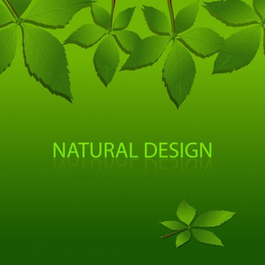Vector design of Nature stock vector