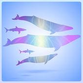Wal auf abstraktem Meeresgrund, Vektorillustration