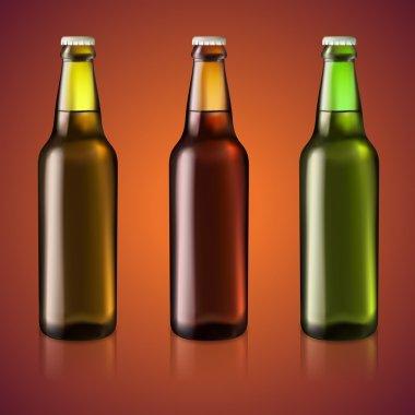 Three bottles of beer, vector illustration stock vector