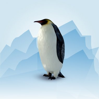 Vector illustration of penguin