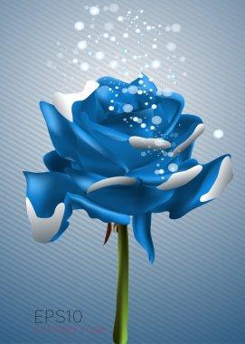 Beautiful blue rose, vector illustration stock vector