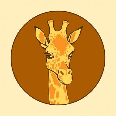 Head of a giraffe, vector illustration stock vector