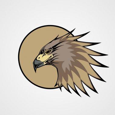 Head of a hawk, vector illustration