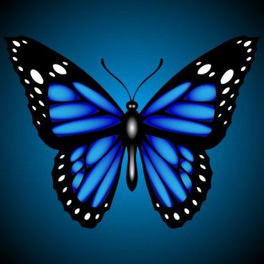 Blue butterfly on dark background, vector