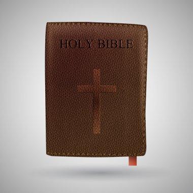 Vector Holy Bible vector illustration stock vector