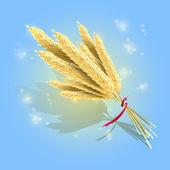 Bündel reifer Weizenähren mit rotem Band, Vektor