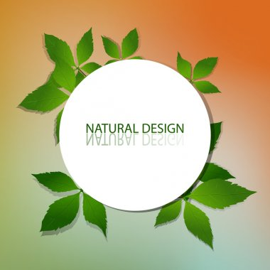 Vector Natural Design Frame stock vector