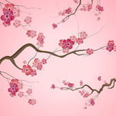 Branches with pink spring flowers