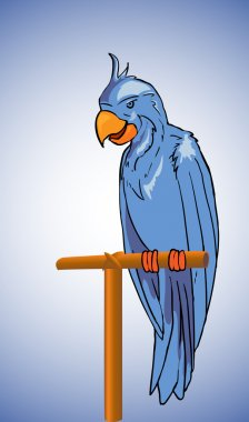 Blue parrot -vector illustration stock vector