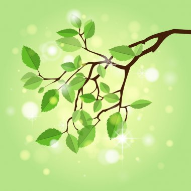 Summer branch,  vector illustration stock vector
