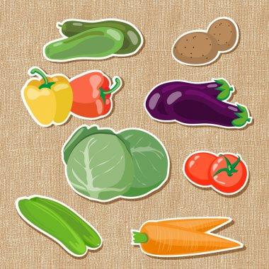 Illustration of vegetables vector illustration
