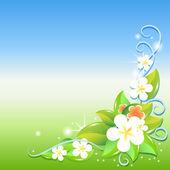 přání s květinami. vektor.