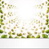 Struktura zelených listů. Vektorová ilustrace