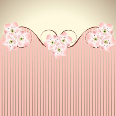 Vector decoration pink honeysuckle sakura or cherry blossom waved background stock vector