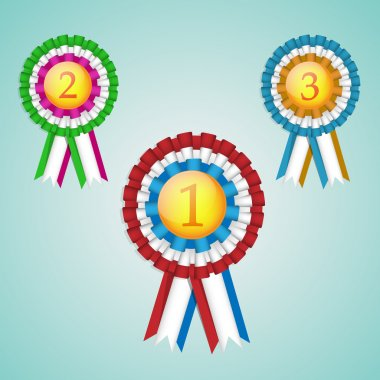 A set of three first, second and third place rosettes stock vector