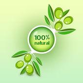 ikona vektorové olivovou ratolestí