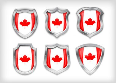 Different icons with canada flag stock vector