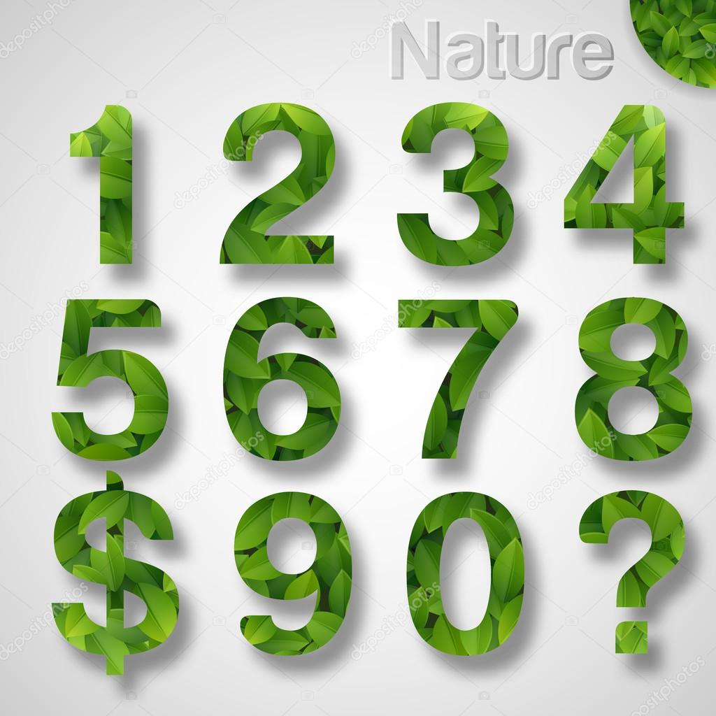 Green leaf numbers. Vector stock vector